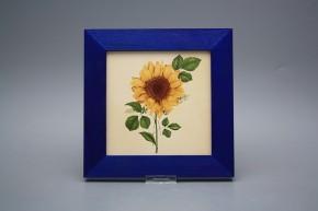 Obrázek 20x20cm Slunečnice eMOB