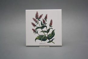 Obklad 15x15cm Herbs W